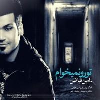 متن آهنگ تورو نمیخوام از امین فیاض