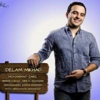 متن آهنگ دلم میخواد از محمد زارع