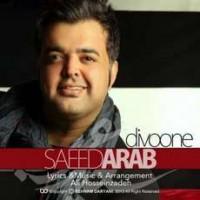 متن آهنگ دیوونه از سعید عرب