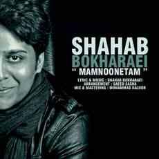 ShahabBokharaei