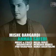 Ahmad Saeidi - Mishe Bargardi