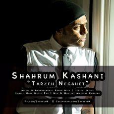 Shahram Kashani - Tarzeh Negahet