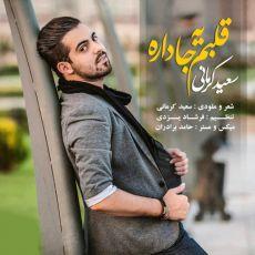 متن آهنگ قلبم یه جا داره سعید کرمانی