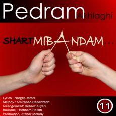 Pedram Akhlaghi - Shart Mibandam