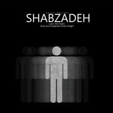 Ehsan Kholghi - Shabzadeh