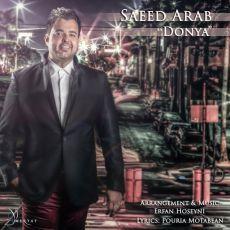 متن آهنگ دنیا سعید عرب