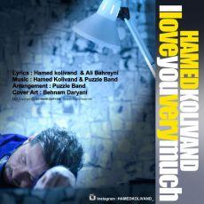Hamed Kolivand - Dooset Daram Ziad