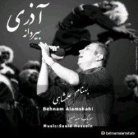 متن آهنگ بیردانه بهنام علمشاهی
