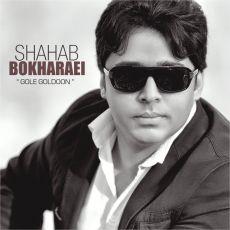 Shahab Bokharaei - Gole Goldoon