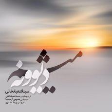Sina Shabankhani - Divoneh Misham