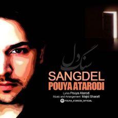 Pouya Atarodi - Sangdel