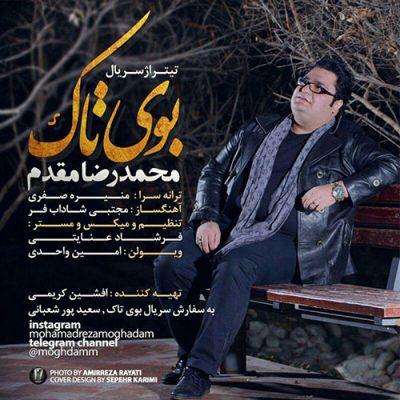 متن آهنگ بوی تاک محمدرضا مقدم