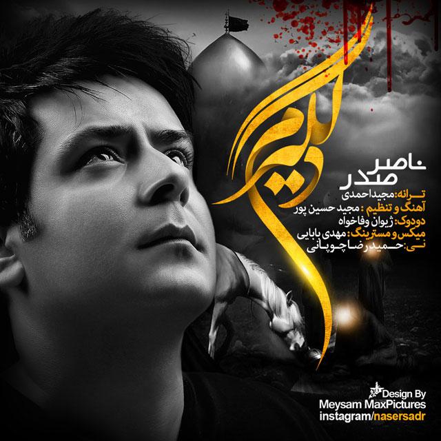 متن آهنگ دلگیرم ناصر صدر