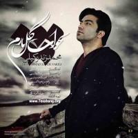 متن آهنگ جدید بخواب گل نازم از محمد زند وکیلی