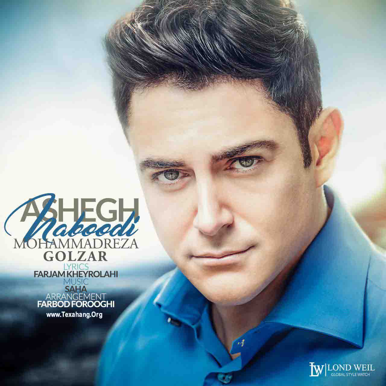 متن آهنگ جدید محمدرضا گلزار به نام عاشق نبودی