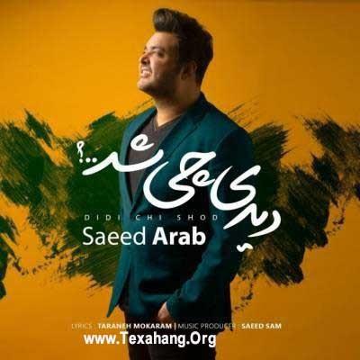 متن آهنگ جدید سعید عرب به نام دیدی چی شد