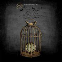 دانلود آهنگ این بود زندگی محسن چاوشی با تنظیم جدید