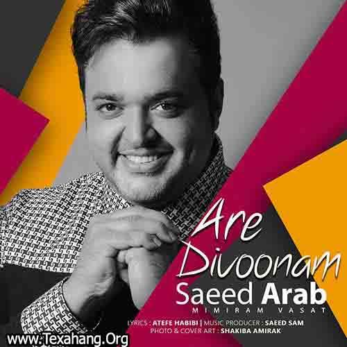 متن آهنگ آره دیوونم سعید عرب